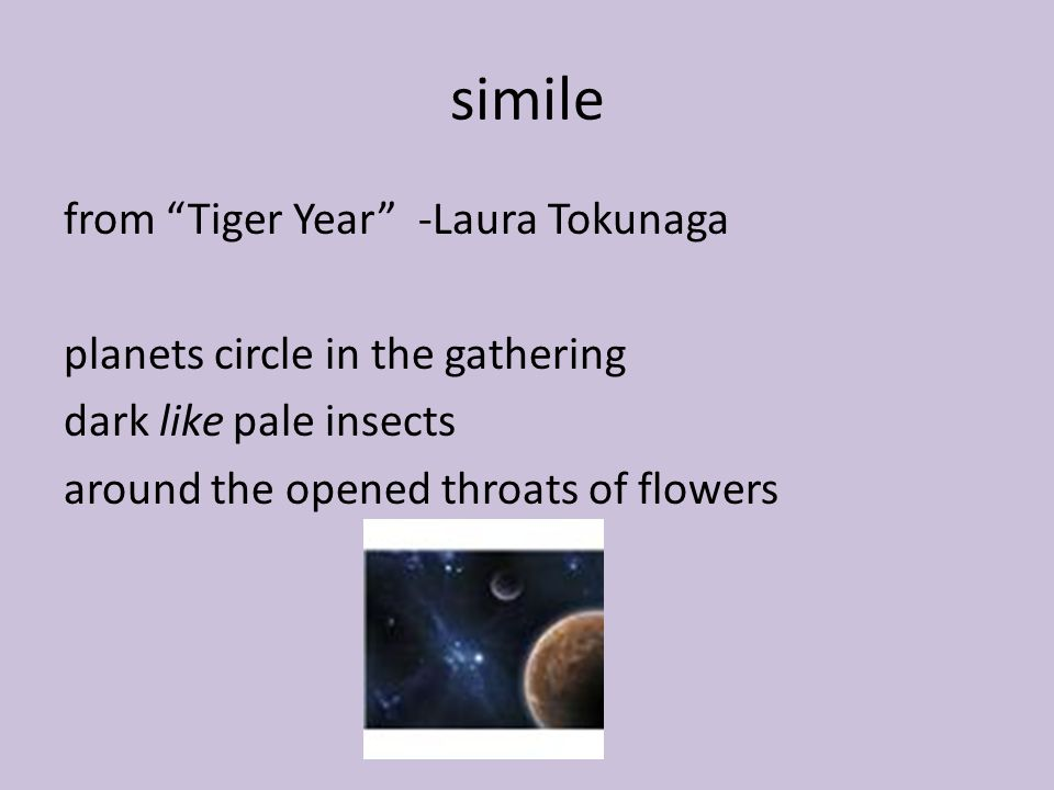simile from Tiger Year -Laura Tokunaga planets circle in the gathering dark like pale insects around the opened throats of flowers