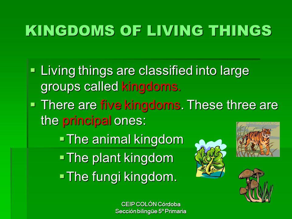 KINGDOMS OF LIVING THINGS