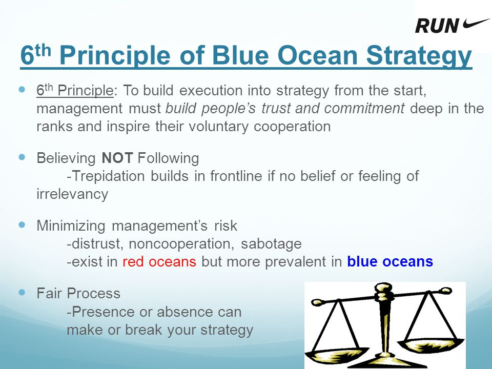 6th Principle of Blue Ocean Strategy