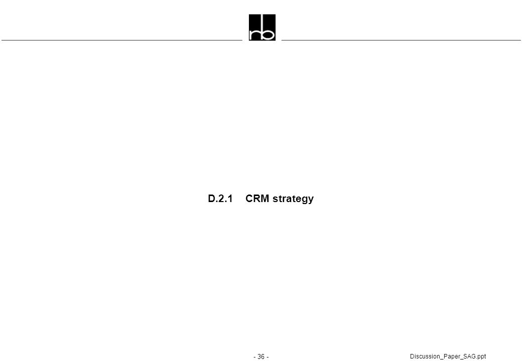 D.2.1 CRM strategy Discussion_Paper_SAG.ppt
