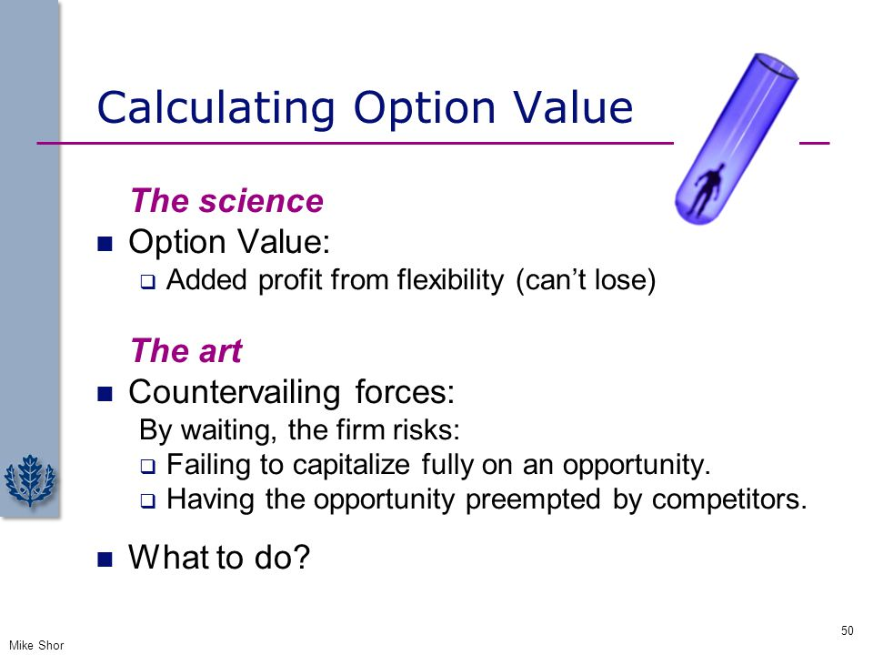 Calculating Option Value