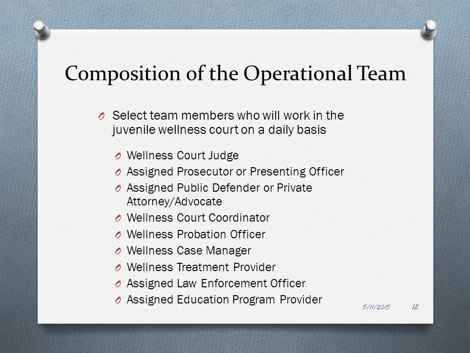 Composition of the Operational Team
