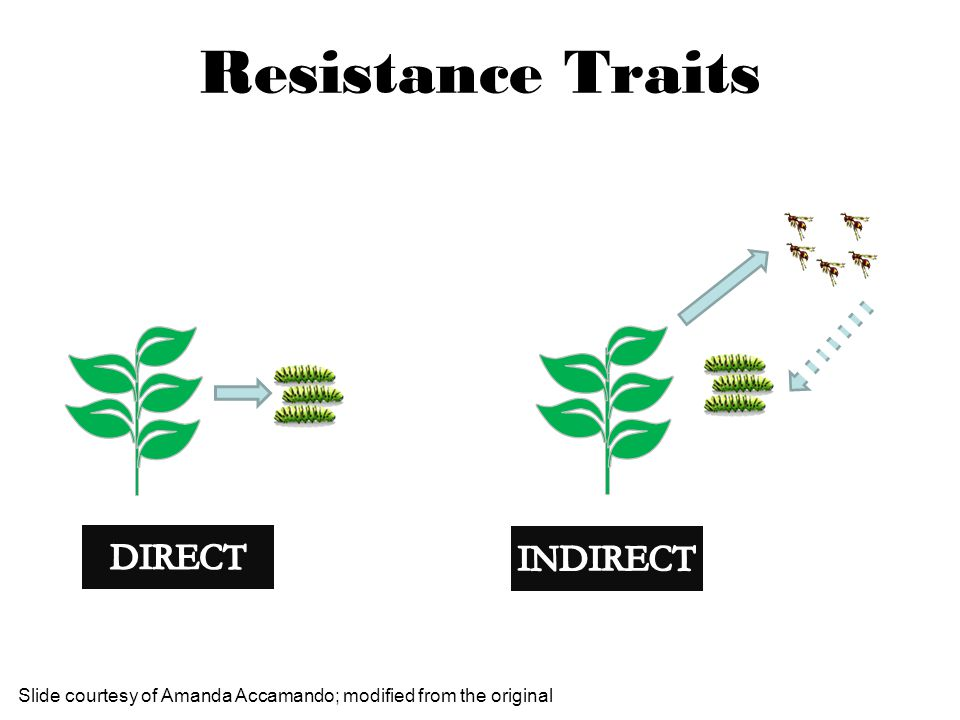 Resistance Traits DIRECT INDIRECT