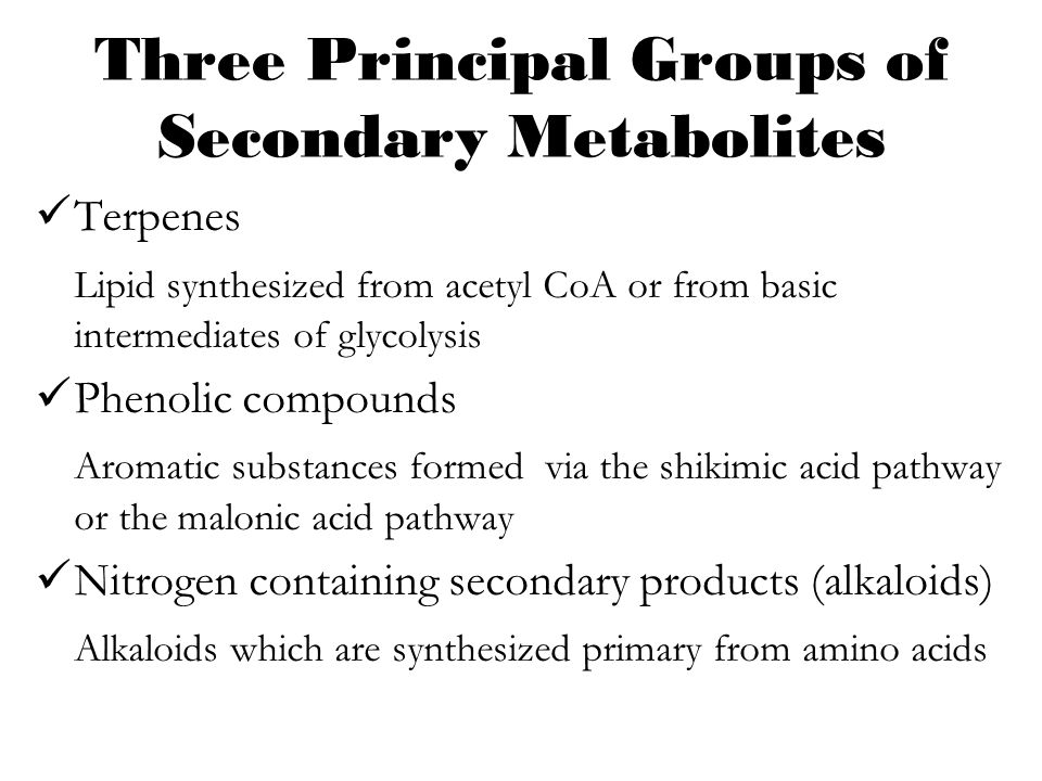 Three Principal Groups of Secondary Metabolites