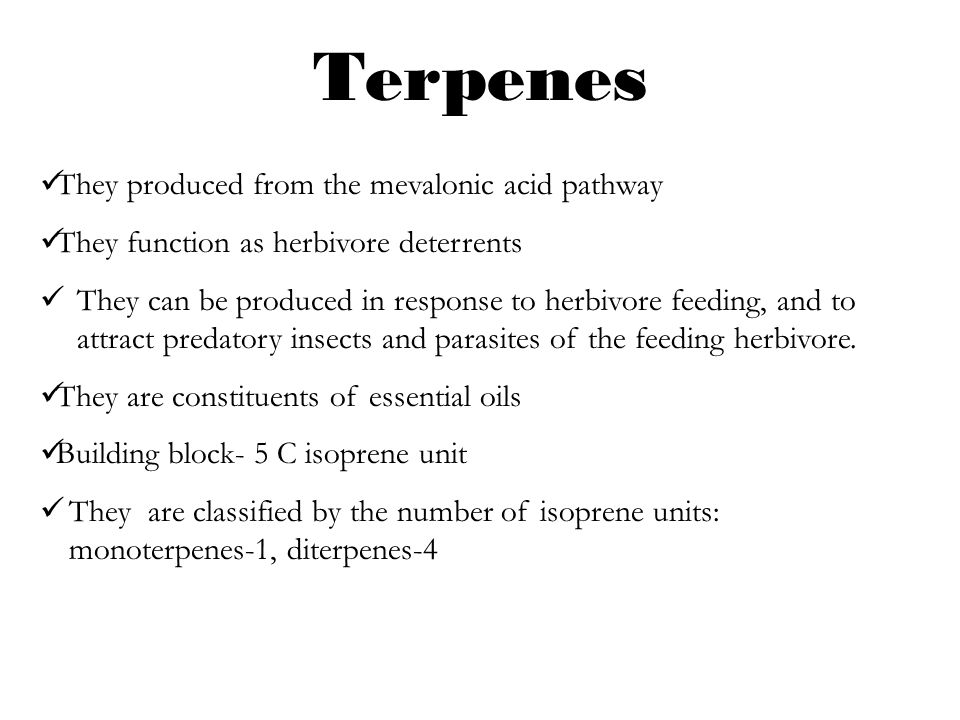 Terpenes They produced from the mevalonic acid pathway