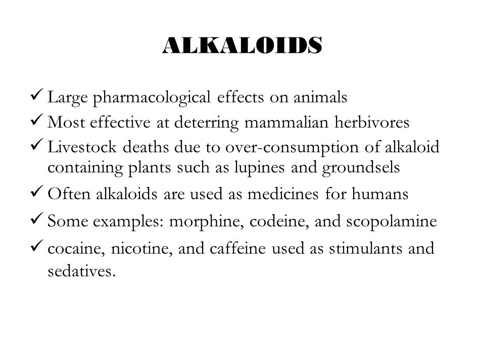 ALKALOIDS Large pharmacological effects on animals