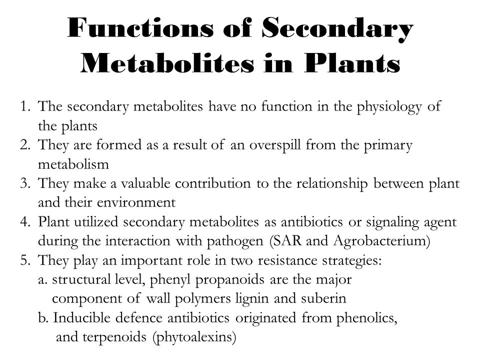 Functions of Secondary Metabolites in Plants