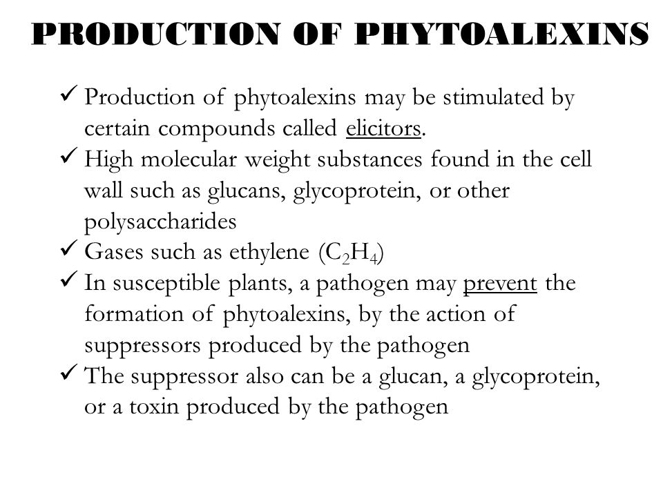 PRODUCTION OF PHYTOALEXINS