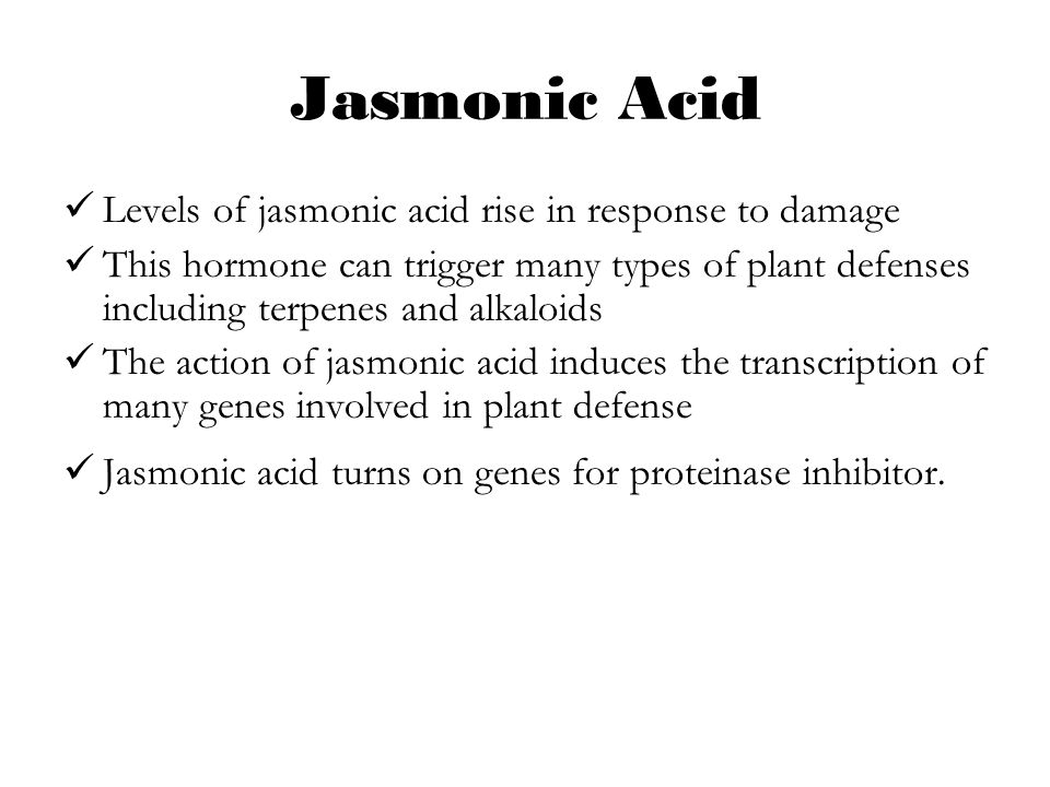 Jasmonic Acid Levels of jasmonic acid rise in response to damage