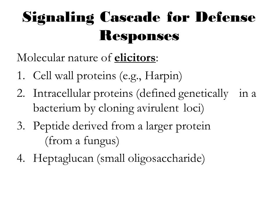 Signaling Cascade for Defense Responses
