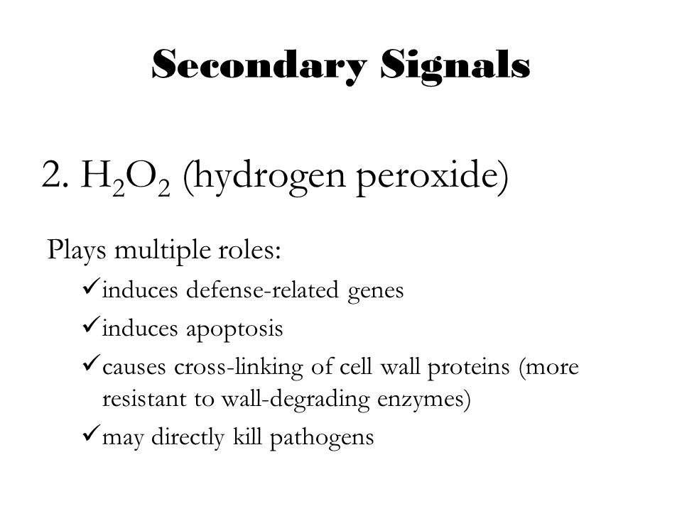 Plant defense and secondary metabolism ppt video online download - Unknown uses hydrogen peroxide ...