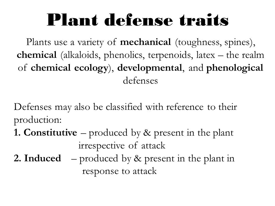Plant defense traits