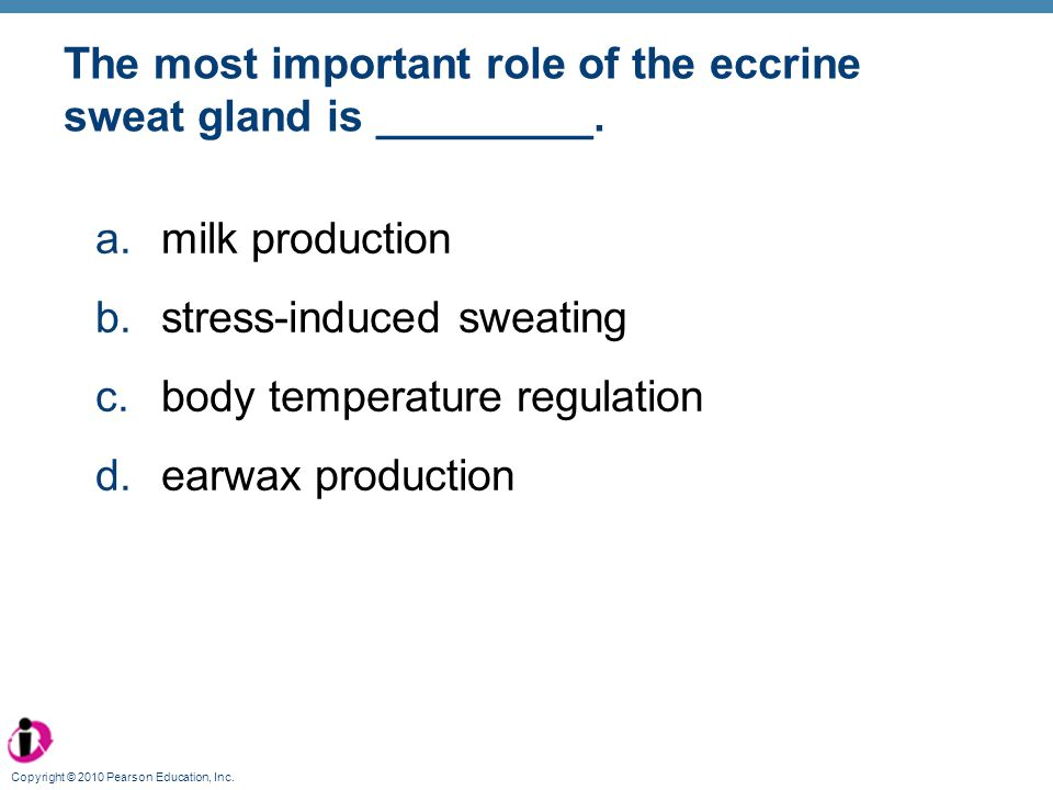 The most important role of the eccrine sweat gland is _________.