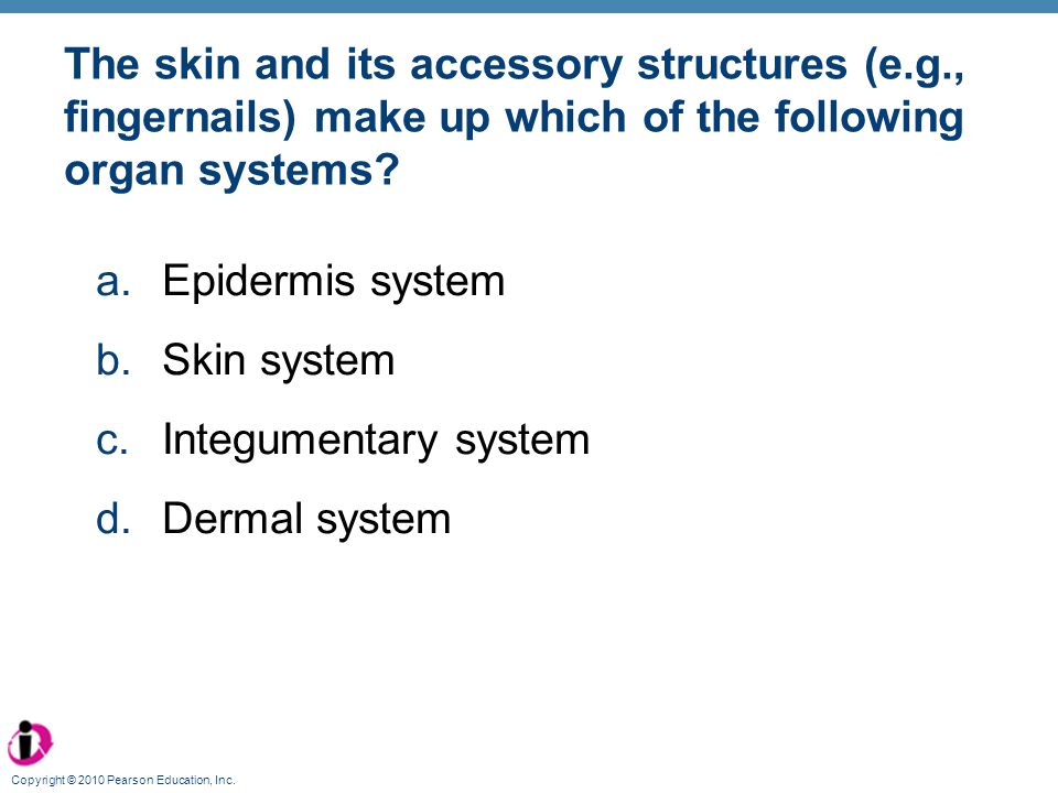 The skin and its accessory structures (e. g