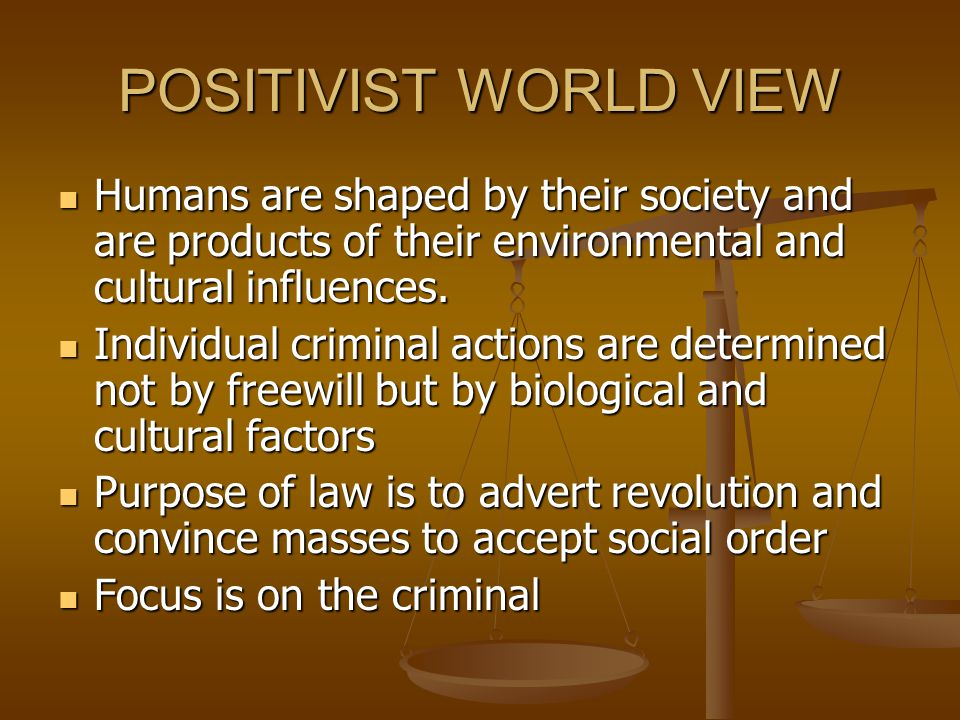POSITIVIST WORLD VIEW Humans are shaped by their society and are products of their environmental and cultural influences.