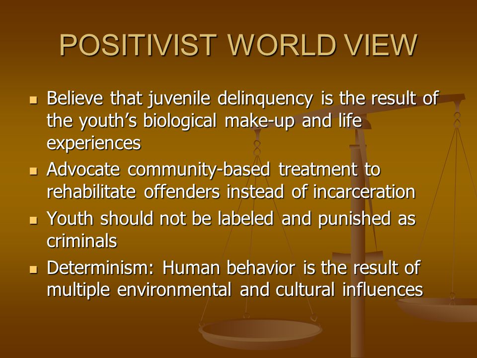 POSITIVIST WORLD VIEW Believe that juvenile delinquency is the result of the youth's biological make-up and life experiences.