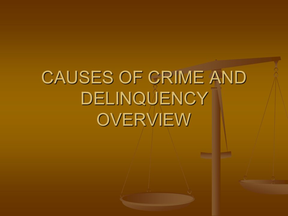 CAUSES OF CRIME AND DELINQUENCY OVERVIEW
