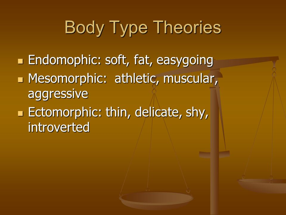 Body Type Theories Endomophic: soft, fat, easygoing