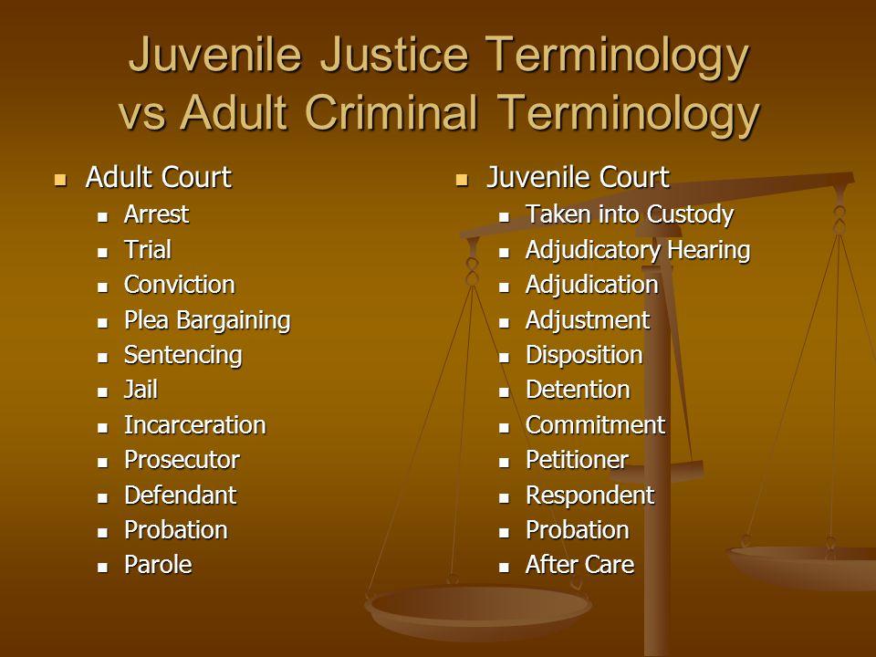 Juvenile Justice Terminology vs Adult Criminal Terminology