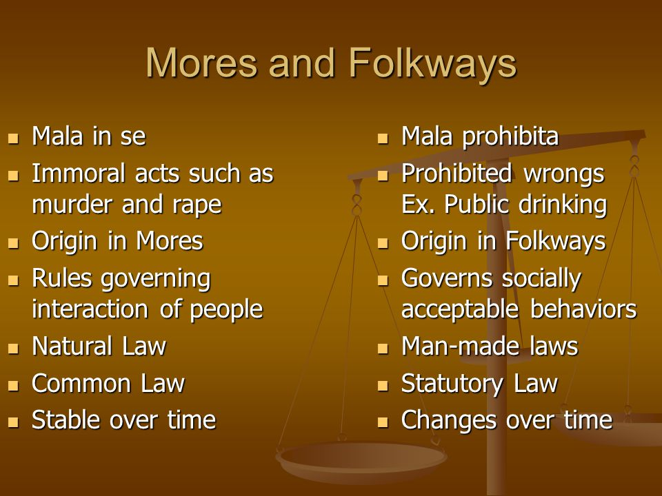 Mores and Folkways Mala in se Immoral acts such as murder and rape