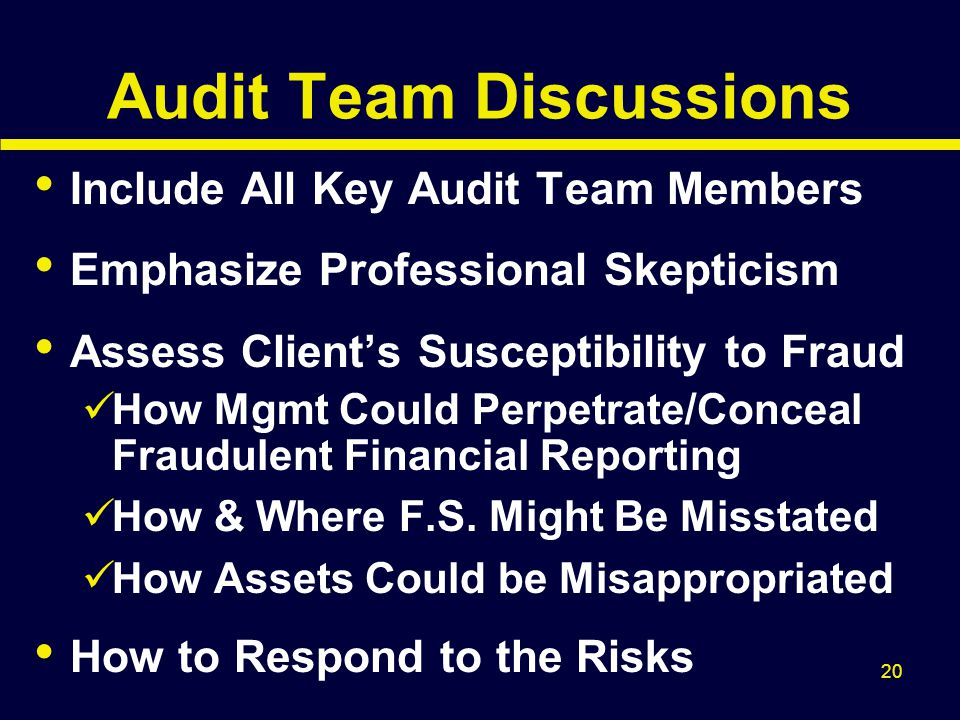 Audit Team Discussions