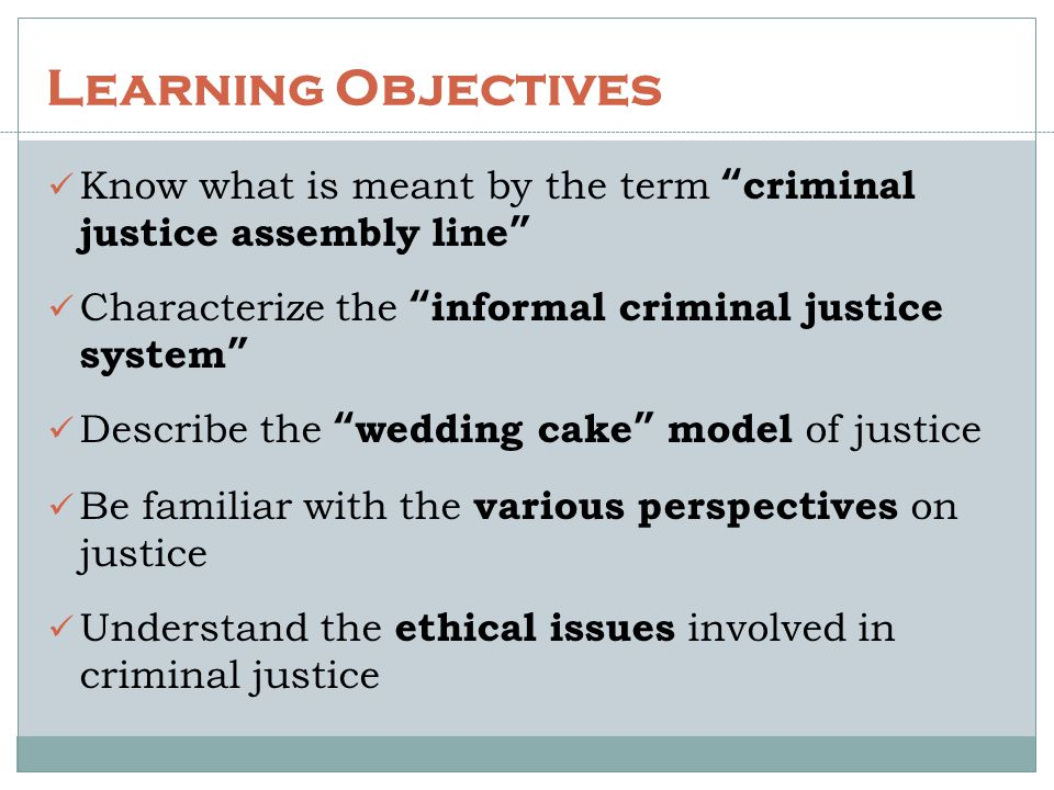 Learning Objectives Know what is meant by the term criminal justice assembly line Characterize the informal criminal justice system