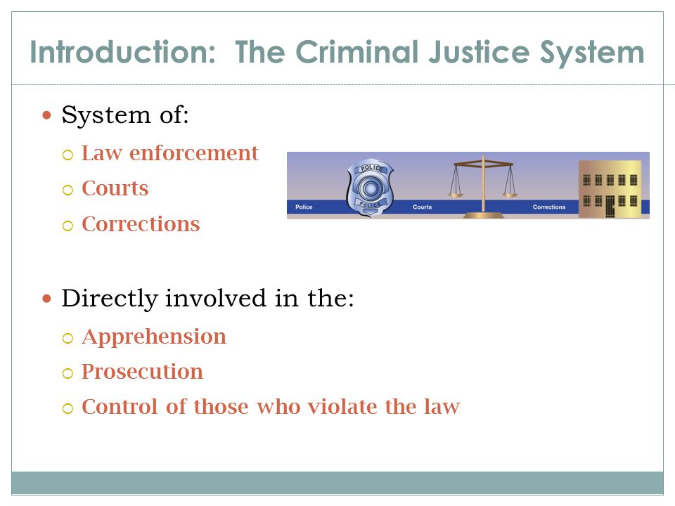 Introduction: The Criminal Justice System