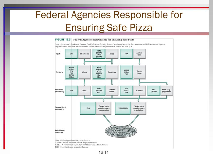 Federal Agencies Responsible for Ensuring Safe Pizza