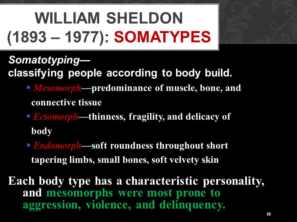 William Sheldon (1893 – 1977): Somatypes