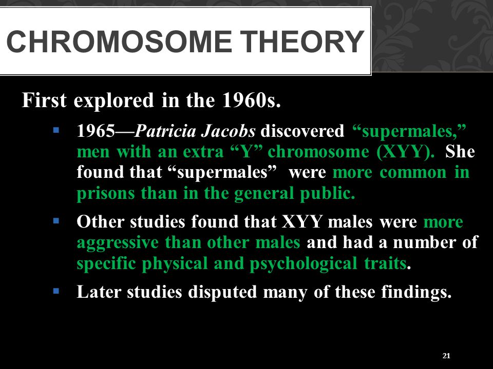 Chromosome Theory First explored in the 1960s.