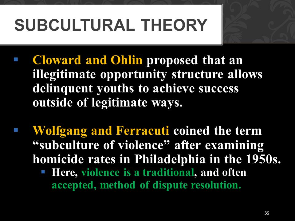 Subcultural Theory