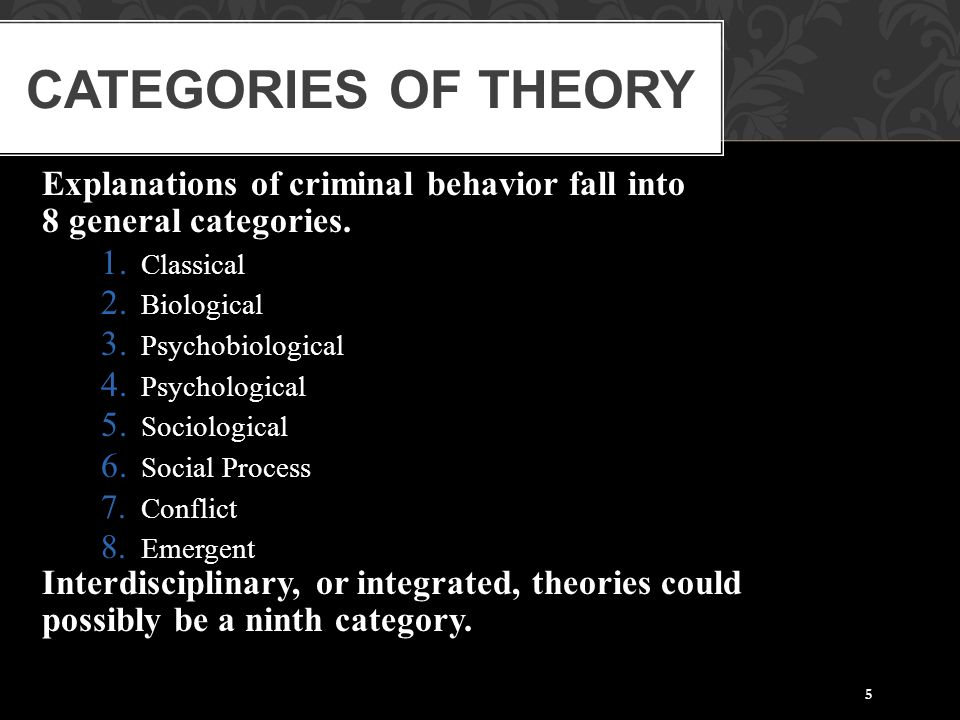 Categories of Theory Explanations of criminal behavior fall into