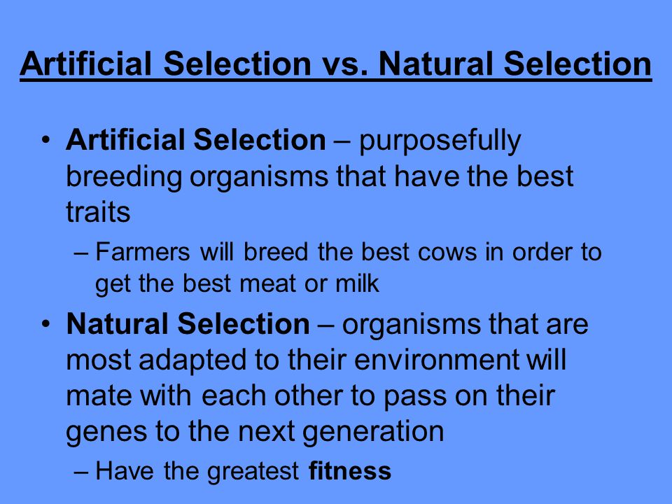 Artificial Selection vs. Natural Selection