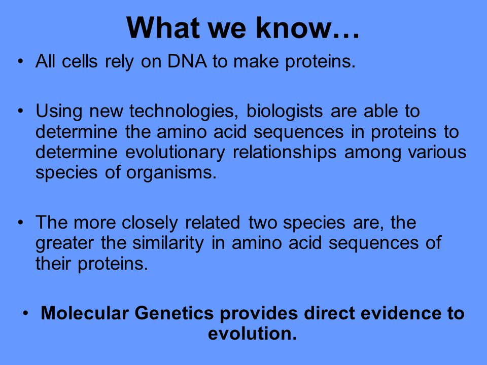 Molecular Genetics provides direct evidence to evolution.
