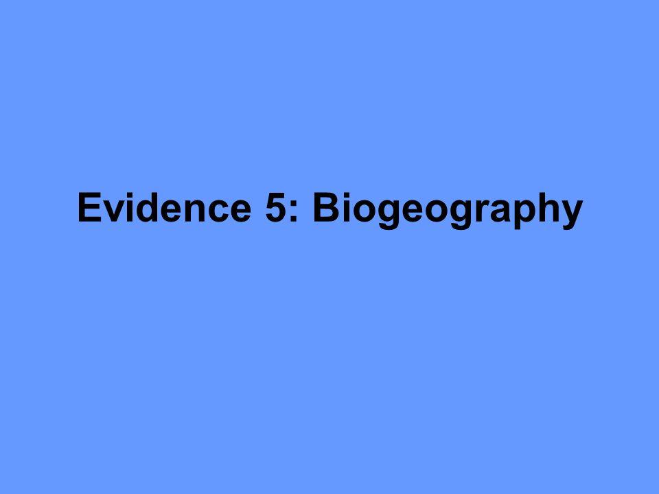 Evidence 5: Biogeography