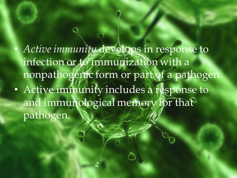 Active immunity develops in response to infection or to immunization with a nonpathogenic form or part of a pathogen.