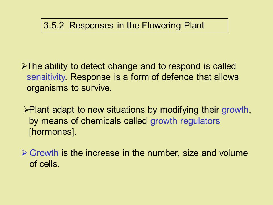 3.5.2 Responses in the Flowering Plant