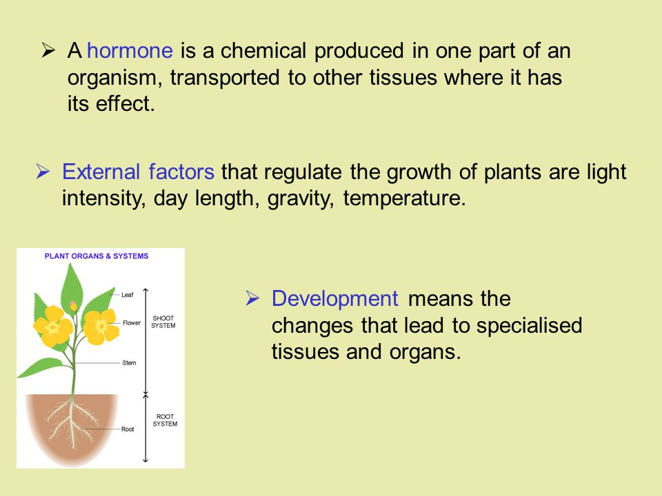 A hormone is a chemical produced in one part of an organism, transported to other tissues where it has its effect.