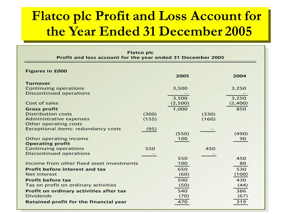 Flatco plc Profit and Loss Account for the Year Ended 31 December 2005