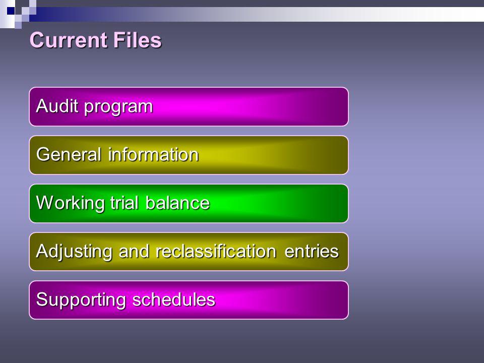 Current Files Audit program General information Working trial balance