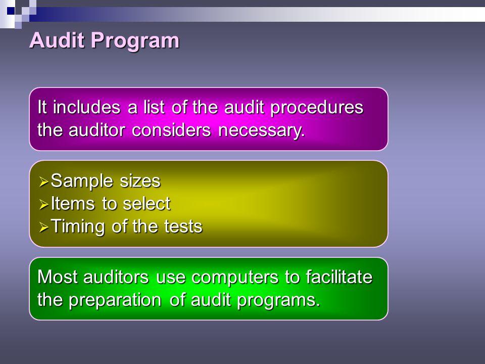 Audit Program It includes a list of the audit procedures
