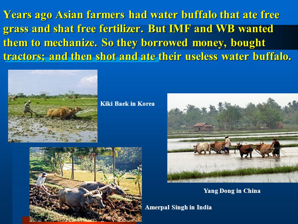 Years ago Asian farmers had water buffalo that ate free grass and shat free fertilizer. But IMF and WB wanted them to mechanize. So they borrowed money, bought tractors; and then shot and ate their useless water buffalo.