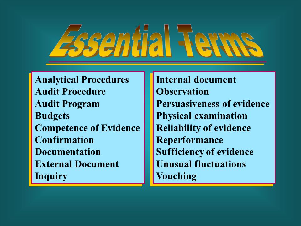 Essential Terms Analytical Procedures Audit Procedure Audit Program