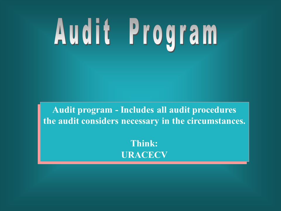 Audit Program Audit program - Includes all audit procedures