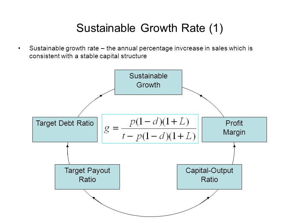 Sustainable Growth Rate (1)