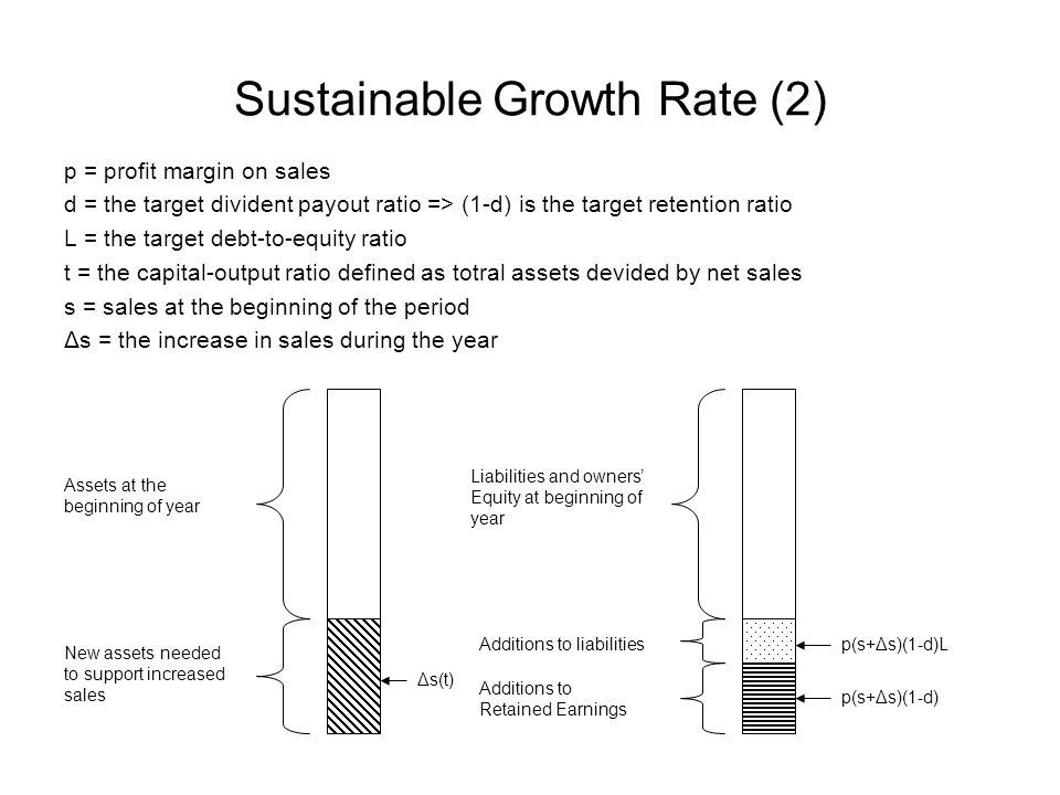 Sustainable Growth Rate (2)
