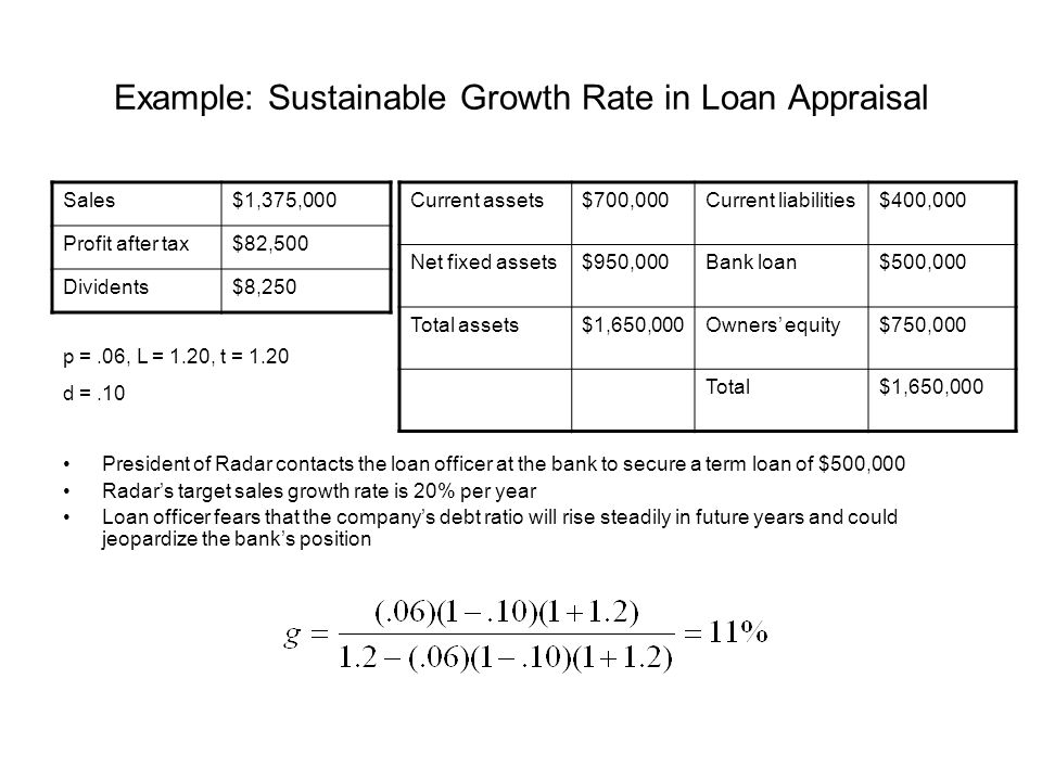 Example: Sustainable Growth Rate in Loan Appraisal