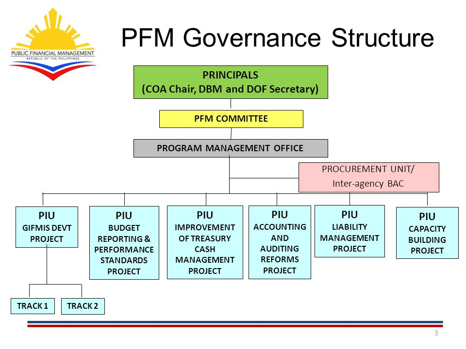 PFM Governance Structure