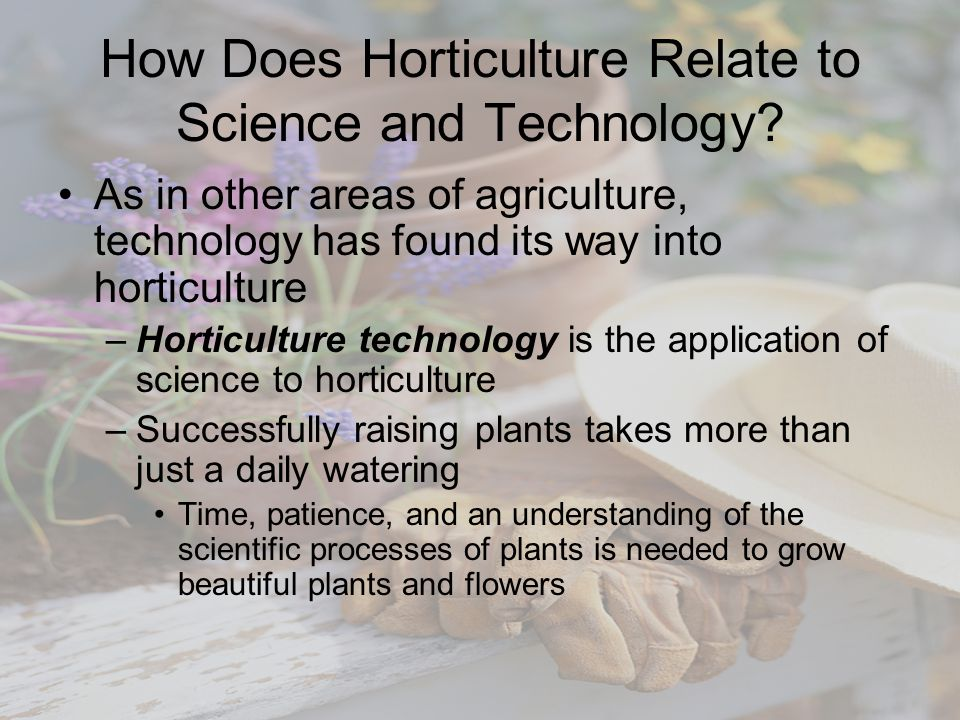 How Does Horticulture Relate to Science and Technology