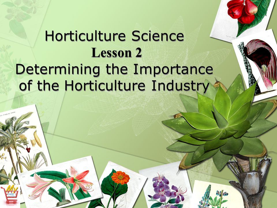 Horticulture Science Lesson 2 Determining the Importance of the Horticulture Industry